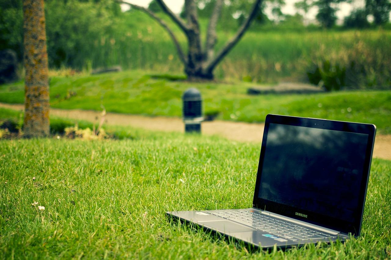 вебинары, повышение квалификации, дистант